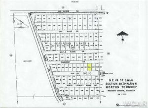 11527 Pinecrest Drive, 836, Canadian Lakes, MI 49346