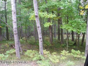 6802 White Pine Drive, 23, Canadian Lakes, MI 49346