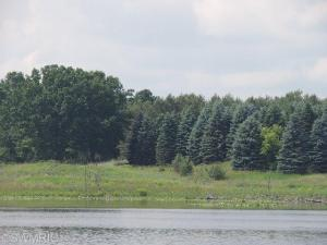 11831 Newcastle Drive, 16, Canadian Lakes, MI 49346