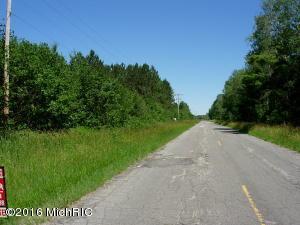 V/L 9 Mile Road, Kaleva, MI 49645