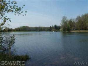 9108 Elmwood Court, Canadian Lakes, MI 49346