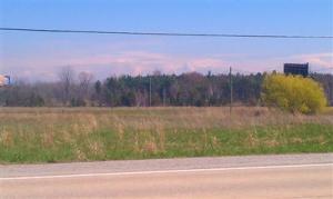 Blue Star Highway, Saugatuck, MI 49453