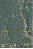V/L Parcel 4 Twin Peaks Road, Frederic, MI 49733