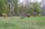 6873 Cedar Trace, Canadian Lakes, MI 49346