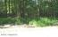 12043 St. Johns Drive, Canadian Lakes, MI 49346