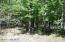 6833 Beechnut Ridge, Stanwood, MI 49346