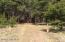 RED APPLE Road, 28.6 acres, Manistee, MI 49660