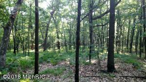 814 Wildlife Trail, Belding, MI 48809