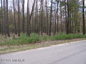 9101 Fawn Lake Drive, Canadian Lakes, MI 49346