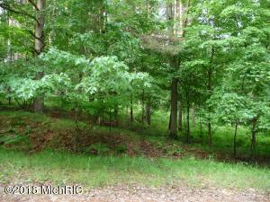 8195 Pine Tree Trail, 178, Canadian Lakes, MI 49346