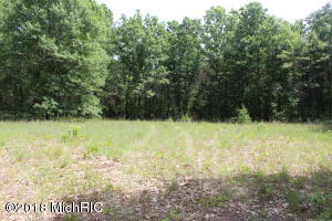 Beautiful, quiet, partially wooded lot outside of Greenville. Jump on M57 for an easy commute to Grand Rapids, Rockford or Greenville.  This lot has 2 acres, is partially cleared and has an existing well and septic.  It is surrounded by mature trees and woods and is a perfect site to build or locate a manufactured home.