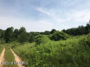 13391 7 Mile Road, Belding, MI 48809