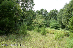 23189 4 Mile Road, Morley, MI 49336