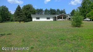 7450 Townline Lake Road, Lakeview, MI 48850