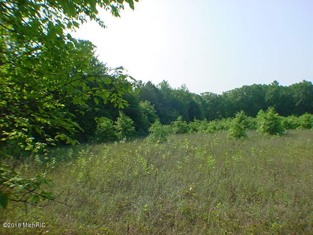 0 120th Avenue, West Olive, MI 49460 - - Land for Sale by