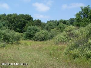 40 acres Monroe Road, Pentwater, MI 49449