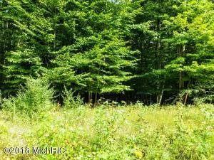 Lot 39 Shawnee Trail, Kewadin, MI 49648