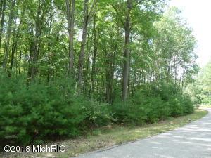 6335 Cedar Trace, 42, Canadian Lakes, MI 49346