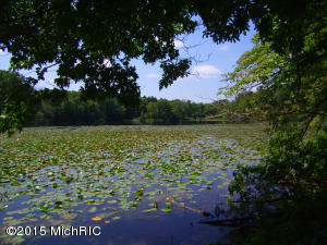 Birch Lakeshore Drive, Vandalia, MI 49095