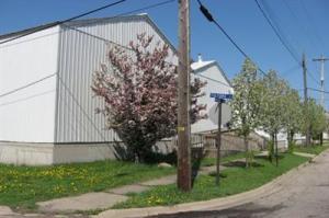 1809 Reed Avenue, Kalamazoo, MI 49001