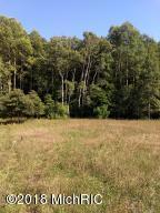 120 Acres North Star Trail, Kaleva, MI 49645