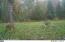 1708 Gehrke Road, Ossineke, MI 49766