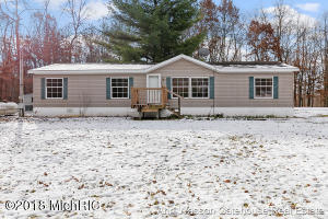 11395 W Holland Lake Road, Gowen, MI 49326