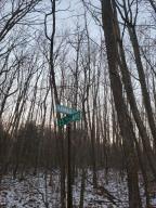 Hannah Road, Remus, MI 49340