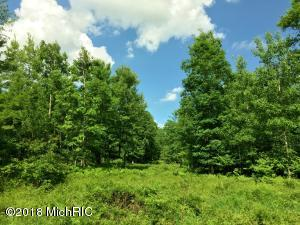 0 State Road, Chase, MI 49623