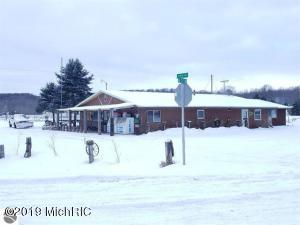10522 N Hodenpyle Dam Road, Mesick, MI 49668