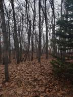 11010 Shawnee Trail, Canadian Lakes, MI 49346