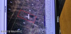 11386 Mackinac Path, Jerome, MI 49249