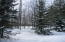 11663 Tullymore Drive, 2, Canadian Lakes, MI 49346