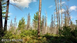 23305 Duck Lake Trail, Newberry, MI 49868