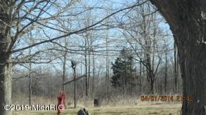 VL N Ridge Road, Elsie, MI 48831