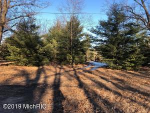0 Blue Lake Road 79 acres, Holton, MI 49425
