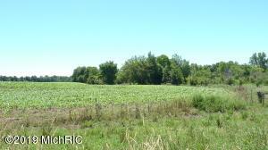 1520 19 Mile Road, Cedar Springs, MI 49319