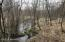 Swanson creek is a artisan well fed trout stream that runs through the property