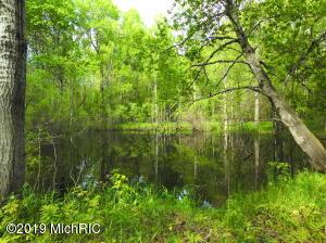 40 Acres 9 Mile Rd, Merritt, MI 49667