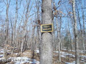 N N Stark Road, Free Soil, MI 49411