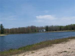 6609 Donegal Court, Canadian Lakes, MI 49346