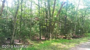 Par A-1 Spruce Road, Idlewild, MI 49642