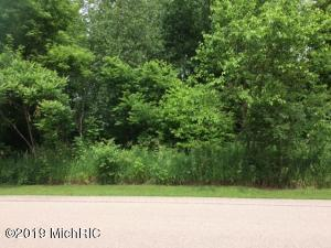Lot #8 Hidden Ponds Drive, Martin, MI 49070