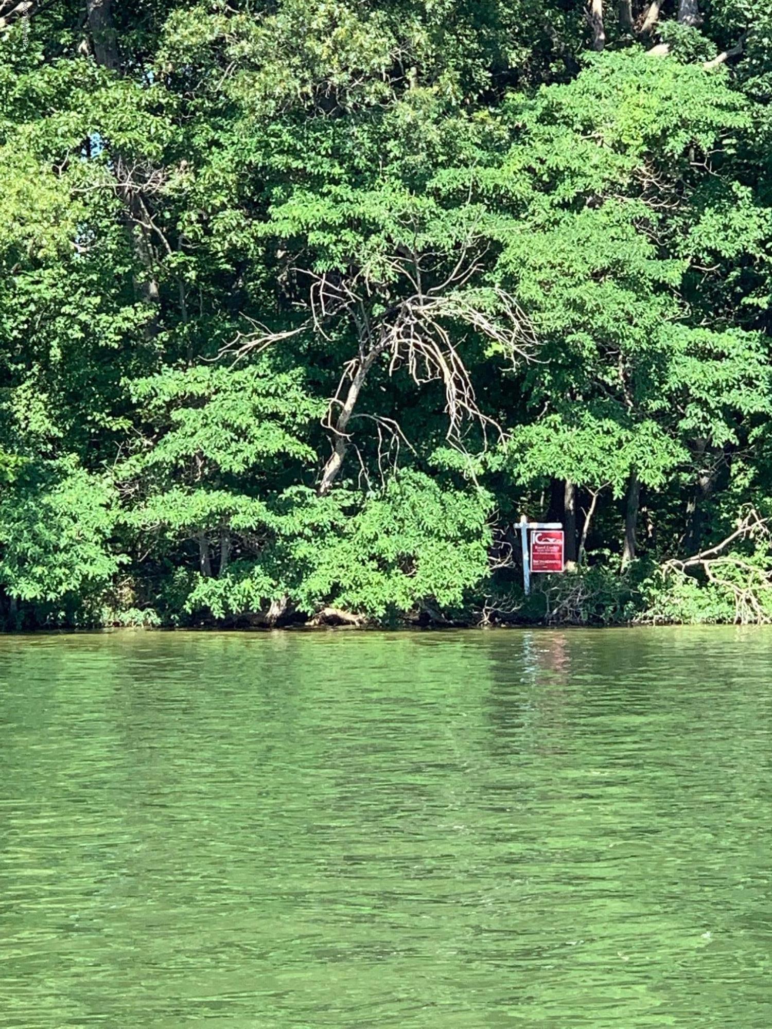 Gun Lake - 19.08.07 - 05