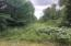 Wooded lot/Power line