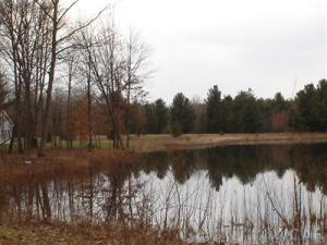 10724 Dobbyn Drive, Canadian Lakes, MI 49346