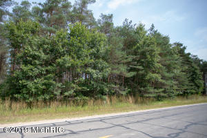 Lot 8 Airline Road, Weidman, MI 48893