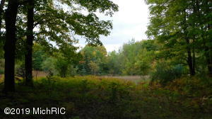 60 Acres Shann Road, Wolverine, MI 49799