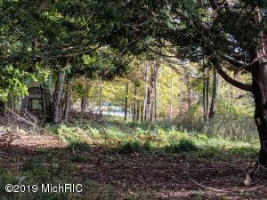 4738 Beech Drive, Lakeview, MI 48850