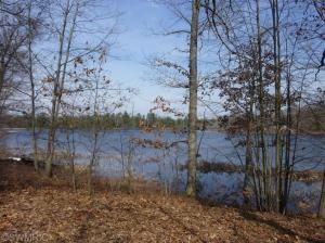 10738 N Beaver Trail, Bitely, MI 49309